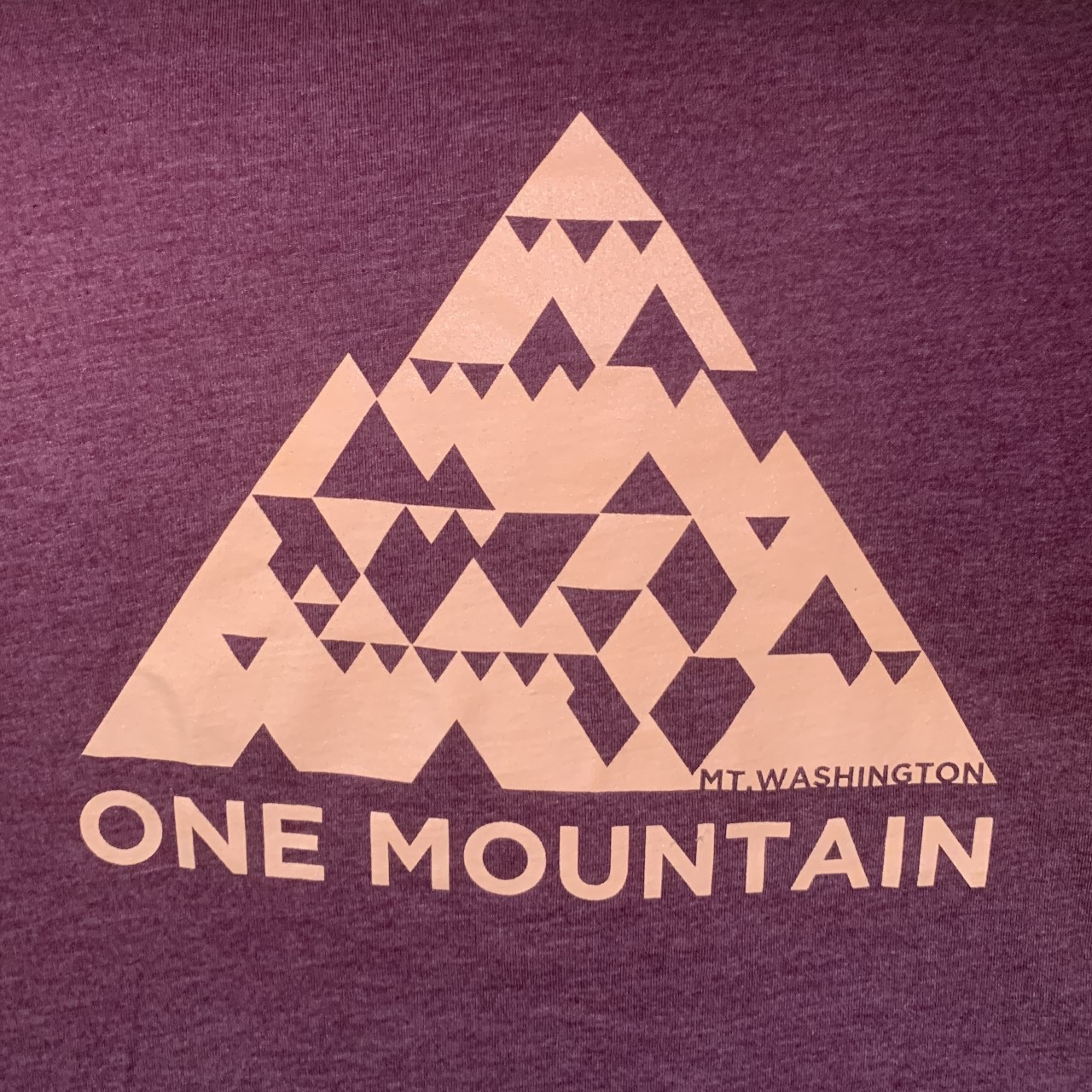 Youth/Teen Crewneck Tee - Heather Maroon/Peach One Mountain